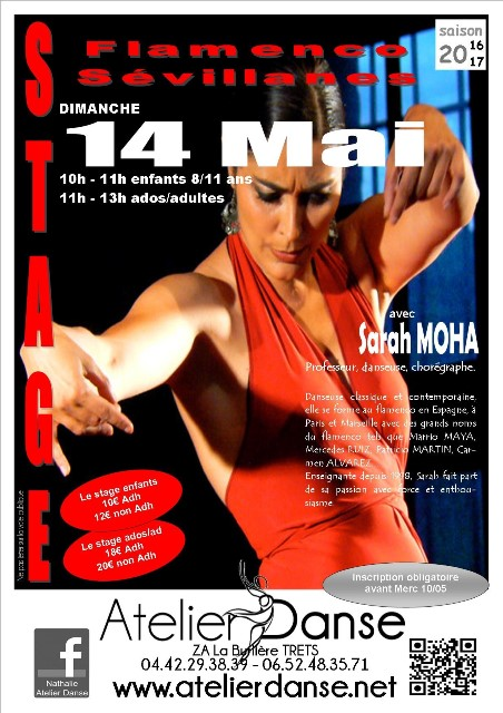 stage flamenco 14 mai 2017 web